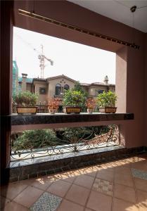 阳台实景图