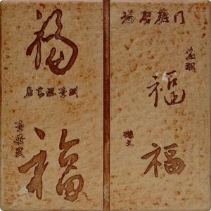DZ04-07